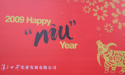 Happy Niu Year!